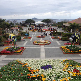 駐車場で色とりどりの花のグループの写真・画像素材[1389634]