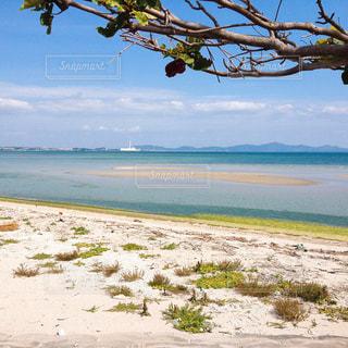 水の体の横にあるビーチの写真・画像素材[1390671]