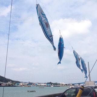 晴れた日に凧の飛行の人々 のグループの写真・画像素材[1395793]