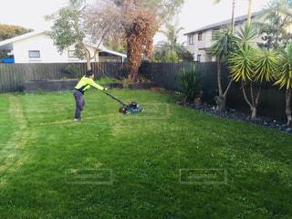草刈り,庭の掃除