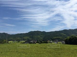 近くに緑豊かな緑のフィールドのの写真・画像素材[1393385]