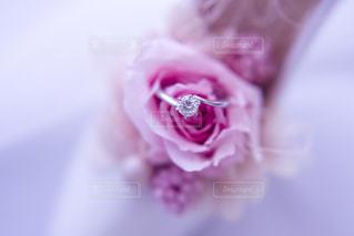 インテリア,花,ピンク,指輪,リング,宝石,ダイヤモンド,ブリザードフラワー,ピンク色,桃色,pink,ハイヒール