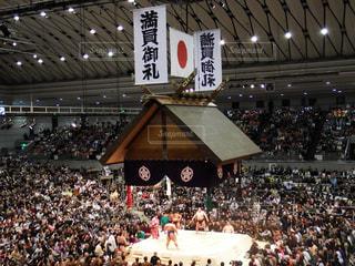 相撲の写真・画像素材[1506679]