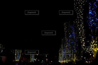 クリスマスの季節の写真・画像素材[1875808]