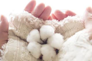 可愛さと機能性を兼ね備えた手袋の写真・画像素材[3029717]