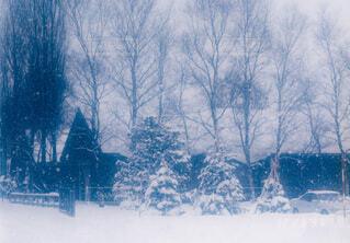 雪の北海道の写真・画像素材[4096963]