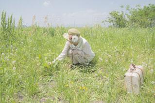 野原で花を摘む女性の写真・画像素材[4213315]