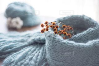 手編みのマフラー&帽子の写真・画像素材[4273621]