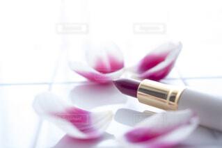 チューリップの花びらと口紅の写真・画像素材[4292110]