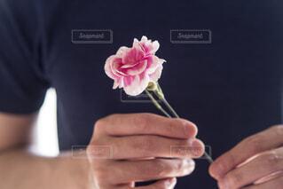 一輪の花を持つ男性の手の写真・画像素材[4391604]