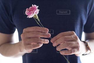 一輪のカーネーションを持っている男性の手の写真・画像素材[4391605]