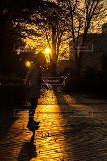 夕日,女の子,茨城,夕焼