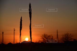 自然,夕暮れ,夕陽,牛久沼,夕日が綺麗