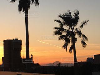 空,夕日,富士山,綺麗,夕焼け,オレンジ,ヤシの木,ディズニーシー,ディズニー,浦安