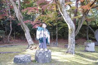 木の隣に立っている男の写真・画像素材[869734]