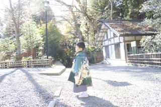 木漏れ日と子の写真・画像素材[869736]