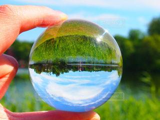 近くに青いボールを持っている手のアップの写真・画像素材[1329387]