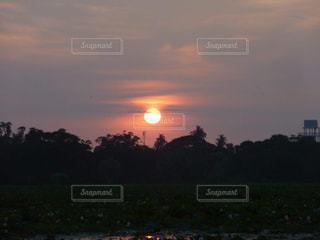 夕日,野生動物,川,大自然,まんまる,国立公園,真っ赤,スリランカ,キレイ