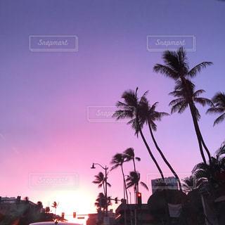 空,夕日,旅行,ヤシの木,ハワイ,サンセット,バケーション,アラモアナ,フォトジェニック