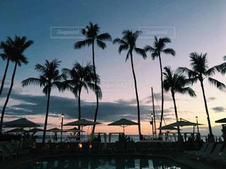 海,空,夏,夕日,ハワイ,ワイキキ,サンセット,ライフスタイル,ワイキキビーチ,フォトジェニック,ハワイ生活