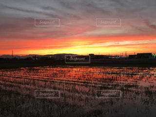 空,夕日,iPhoneカメラ,フィルムカメラ,愛知県,フィルム写真,フィルム風
