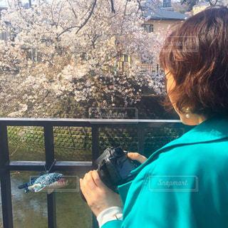 風景,カメラ,屋外,後ろ姿,樹木,人物,人,後ろ姿フォト
