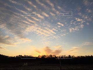 風景,空,夕日,雲,鳳凰,夕映え,鳳凰の様な