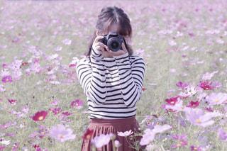 カメラ,カメラ女子,ピンク,かわいい,コスモス,カラフル,鮮やか,女の子,写真,秋桜,素敵,ピンク色,桃色,pink,佐賀県,佐賀市,色・表現