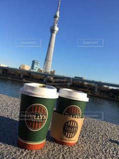 ツリーもコーヒーも縞の写真・画像素材[1281620]