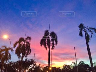 自然,海,空,夕日,ピンク,景色