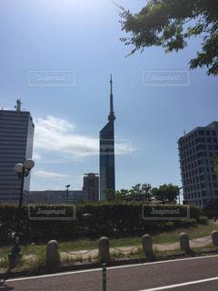 川向こうの福岡タワーの写真・画像素材[1329519]