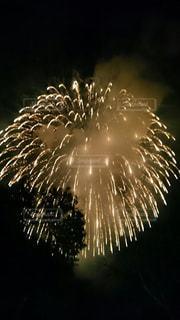 空に花火の写真・画像素材[1313132]