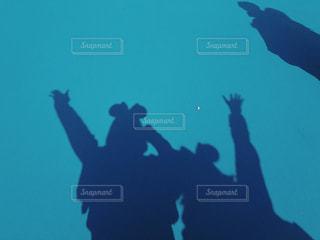 暗闇の中で泳ぐ鳥の群れの写真・画像素材[1312534]