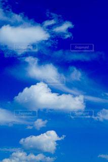 散歩して見上げた秋の空の写真・画像素材[2413529]