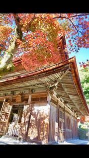 古刹に青空と紅葉が映える秋の写真・画像素材[2510721]