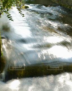 陽射しをたっぷり浴びる名水百選の清流の写真・画像素材[2638048]