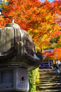 京都 永観堂 秋晴れの景色の写真・画像素材[2747272]