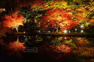 逆さ紅葉の絶景の写真・画像素材[3718914]