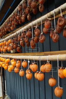 収穫の秋 冬に備えての写真・画像素材[4009188]