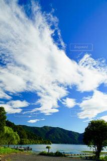 余呉湖畔の夏の風景の写真・画像素材[4608063]