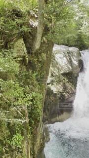 自然,夏,屋外,水面,滝,樹木,岩,旅,エメラルドグリーン,水遊び,のんびり,冷たい,清流,眺め,名爆,カスケード