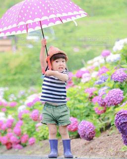 ピンクの傘を保持している小さな女の子の写真・画像素材[1286141]