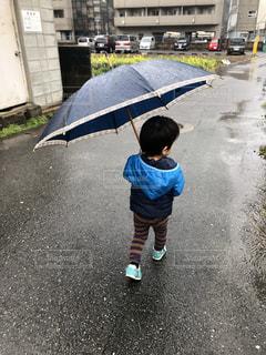 子ども,雨,傘,屋外,人物,幼児,男の子