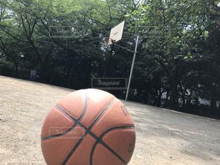 公園,スポーツ,晴れ,ボール,バスケットボール,バスケ,運動,遊び
