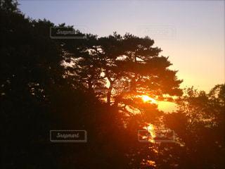 夕日,夕暮れ,夏空,夏の日,宮城県大島,木漏れ日からの夕日