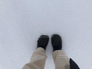 降り始めた雪の写真・画像素材[4070220]