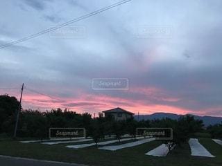 空,夕日,屋外,赤い空,桃の木