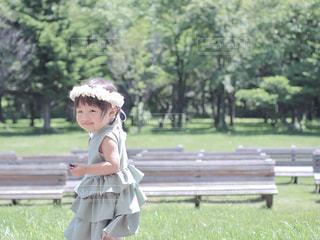 森の妖精の写真・画像素材[1289783]