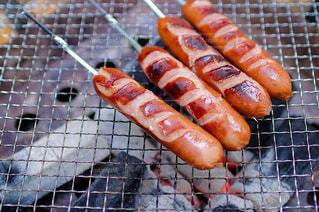 食べ物,屋外,キャンプ,ウインナー,ごはん,焼肉,BBQ,キャンプ飯,ウィンナー,ジョンソンヴィル