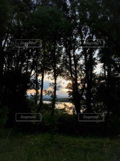 空,屋外,湖,森,夕焼け,光,樹木,夕陽,秘密の場所,インスタ映え